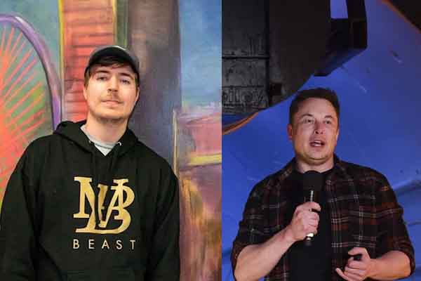 Elon Musk Donates $1 Million To MrBeast's 20 Million Trees Campaign. Why Aren't Mainstream Media Covering It?