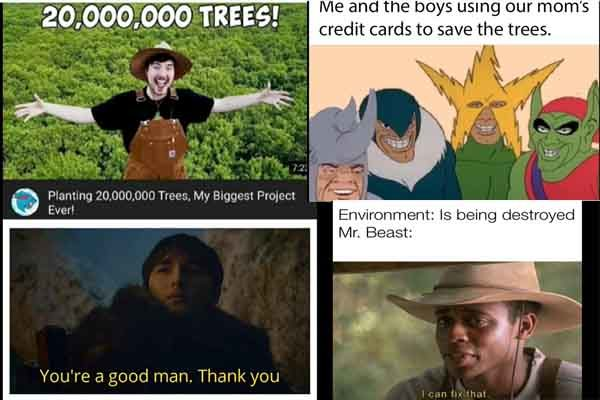 MrBeast and Teamtrees meme