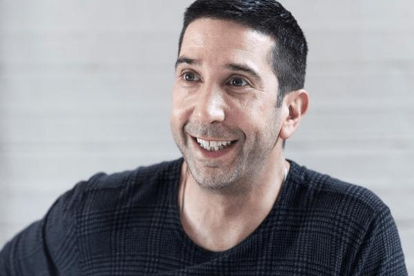David Schwimmer's Net Worth, Income, Career, Married